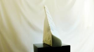 Genesis, KMJ studio, Colorado Yule Marble by Martin Cooney