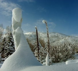 Inner Strength, 3, Colorado Yule Marble by Martin Cooney